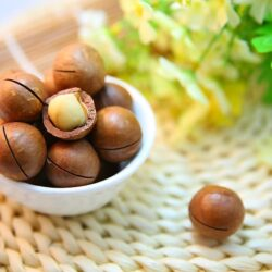 bunch-of-macadamia-seeds